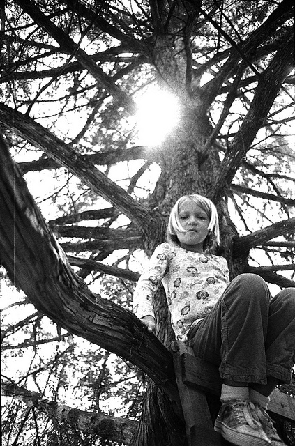 person-in-tree